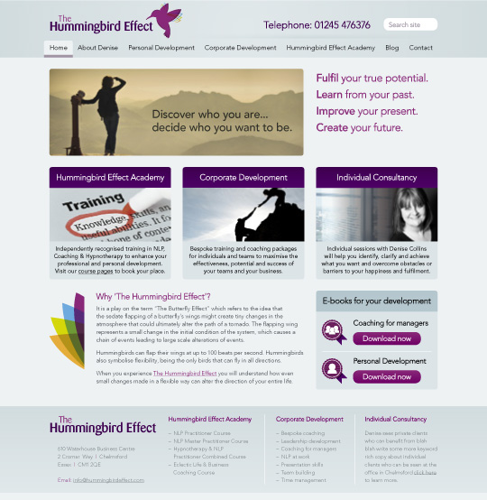 WordPress Designer Chelmsford