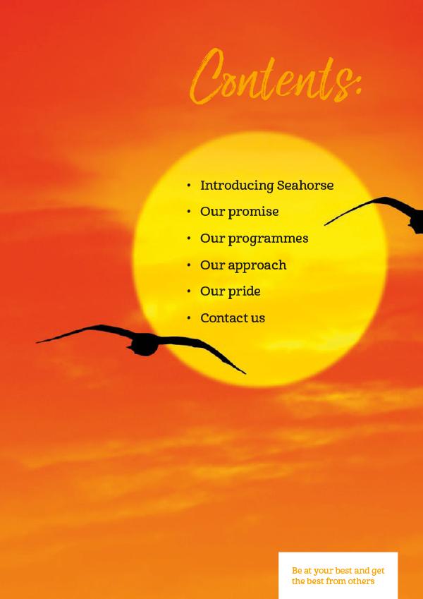 Brochure Design Microsoft Word